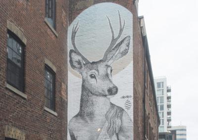 Deer Diana