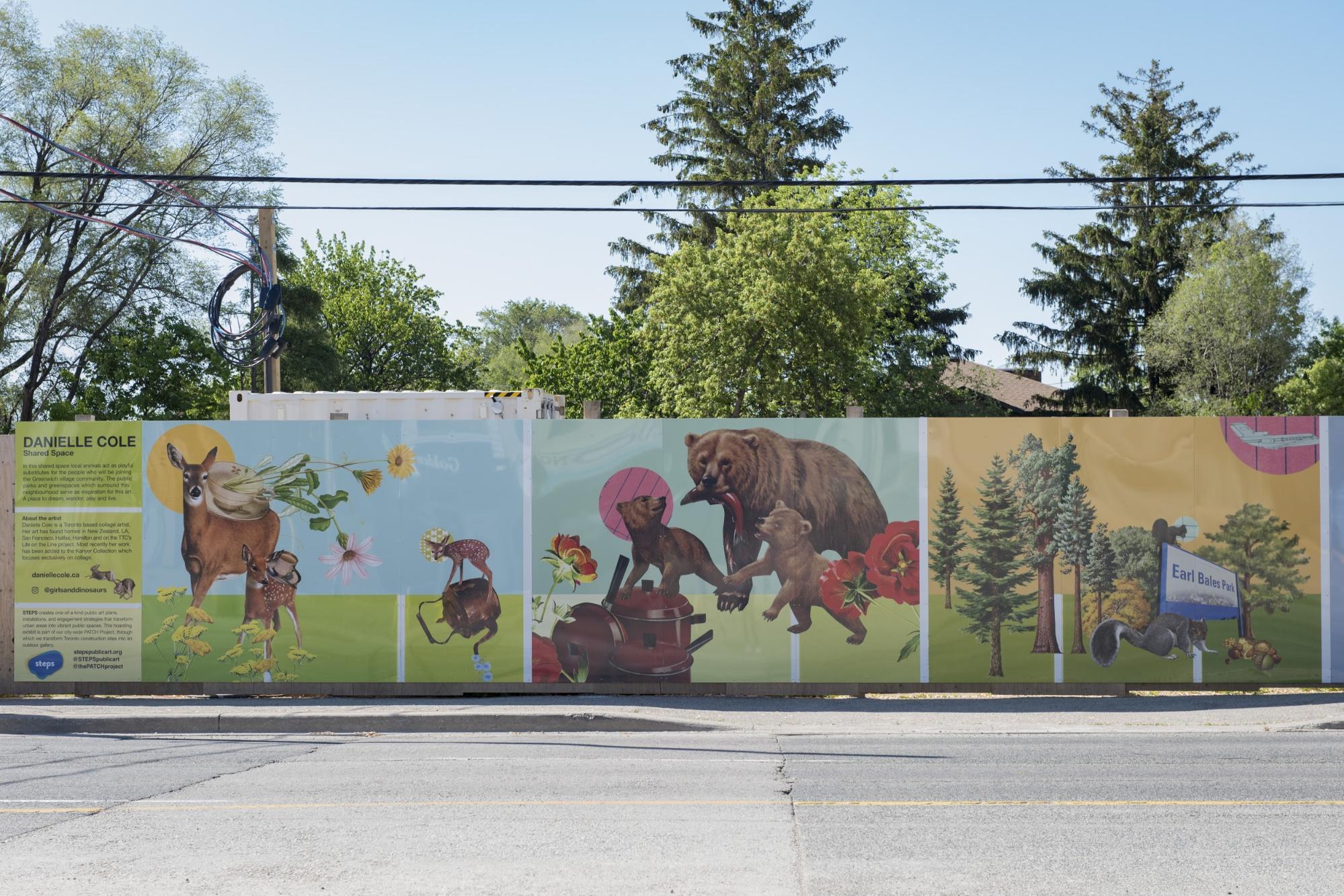 Danielle Cole's artwork of wildlife on construction hoardings